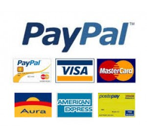 visa mastercard paypal maestro american express diners